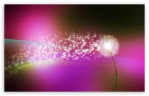 dandelion_blowing_in_the_wind-t2